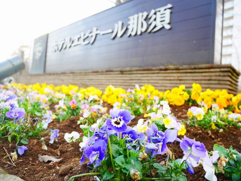 春を彩るお花たち♪レジャー施設続々オープン!